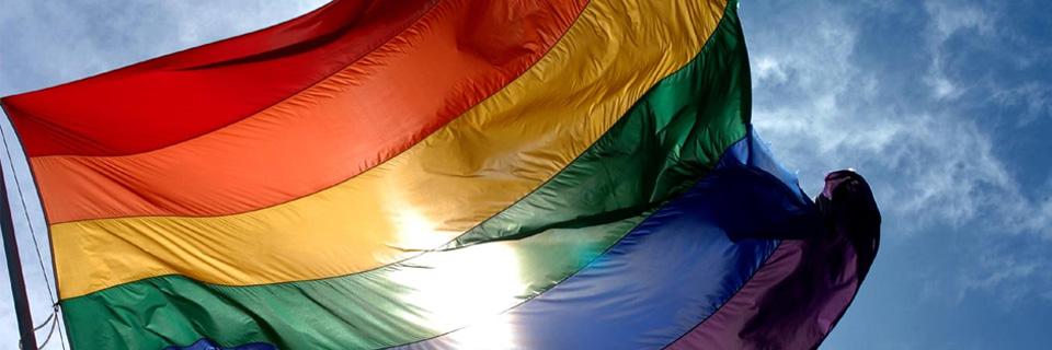 la chiesa e le unioni gay